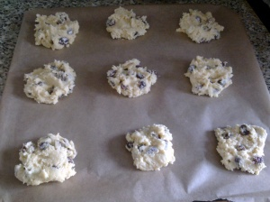 Rum and raisin biscuits, pre-baking