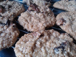 Oat, raisin and fig cookies